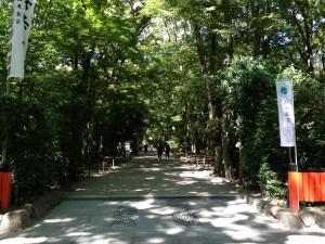 糺の森 入口