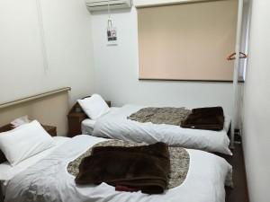 フレッチア 寝室