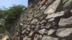 浜松城の野面積み石垣