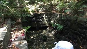 熱田神宮の清水