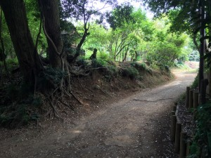 小野路城付近の鎌倉古道