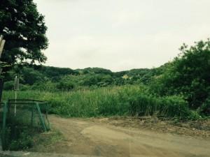 小野路城の遠景(東側から)