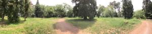 新府城の本丸パノラマ写真
