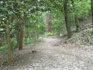 武田八幡神社から白山城への登城口