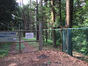 泉の森公園の引地川源流