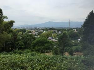 座間谷戸山公園から座間の展望