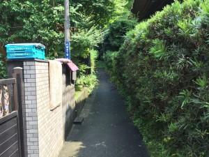 常楽寺近くの道