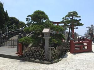 鶴岡八幡宮の境内