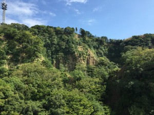 日本平の屏風谷