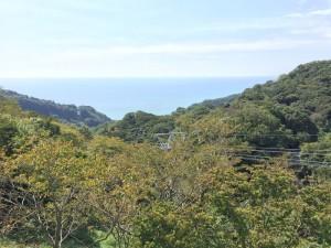 日本平ロープウェイからの車窓