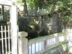 深大寺の不動の滝