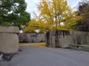 大阪城の京橋口