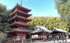 明王院 (福山市)