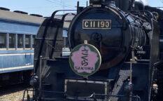 大井川鉄道の解説