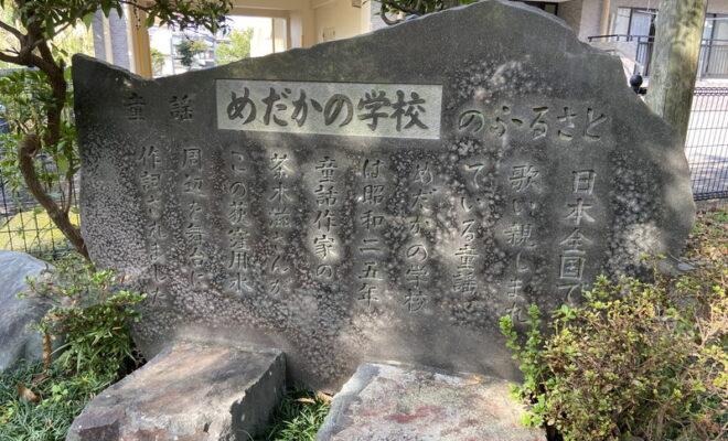 小田原・めだかの学校