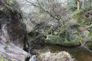 景ヶ島渓谷
