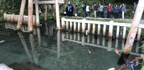 鹿島神宮「御手洗池」