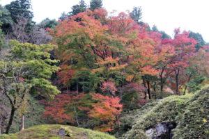 西山荘の紅葉