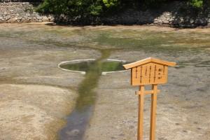厳島神社の鏡の池