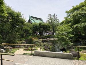 鎌倉「長谷寺」