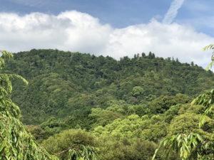 三諸山(みもろやま)