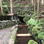 泉の森(泉の森大神)