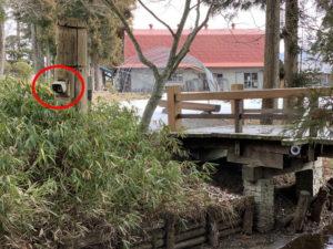 カッパ淵に監視カメラ
