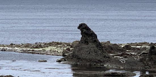 能登「ゴジラ岩」