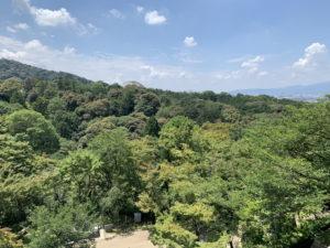 清水寺からの展望