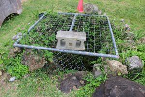 勝連城の井戸
