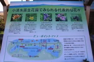 小清水原生花園