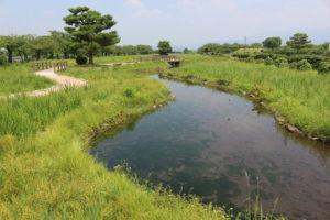 瓢湖(ひょうこ)